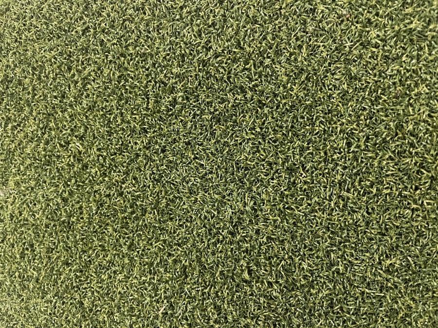 Sports Put Pro Wa turf gurus Golf Grass