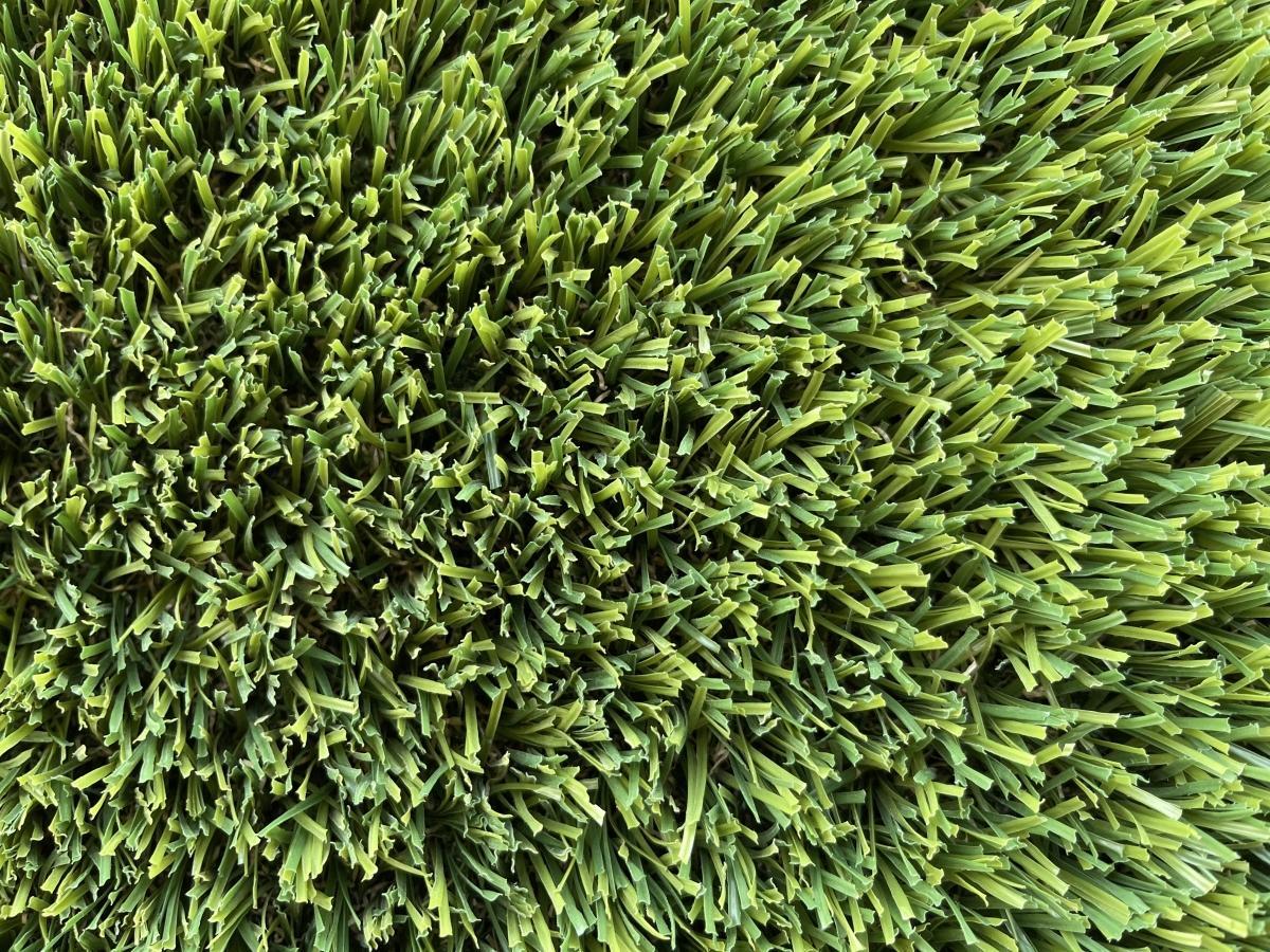 Swan Valley Buffalo Artificial grass Perth Wa turf gurus