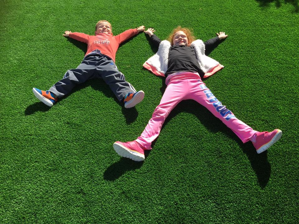 artificial grass installation Osbourne Park